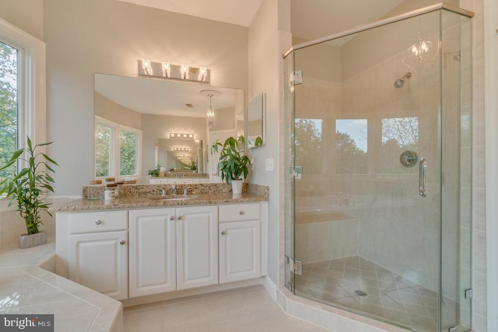 Master bath with frame-less shower - 43559 FIRESTONE PL, LEESBURG