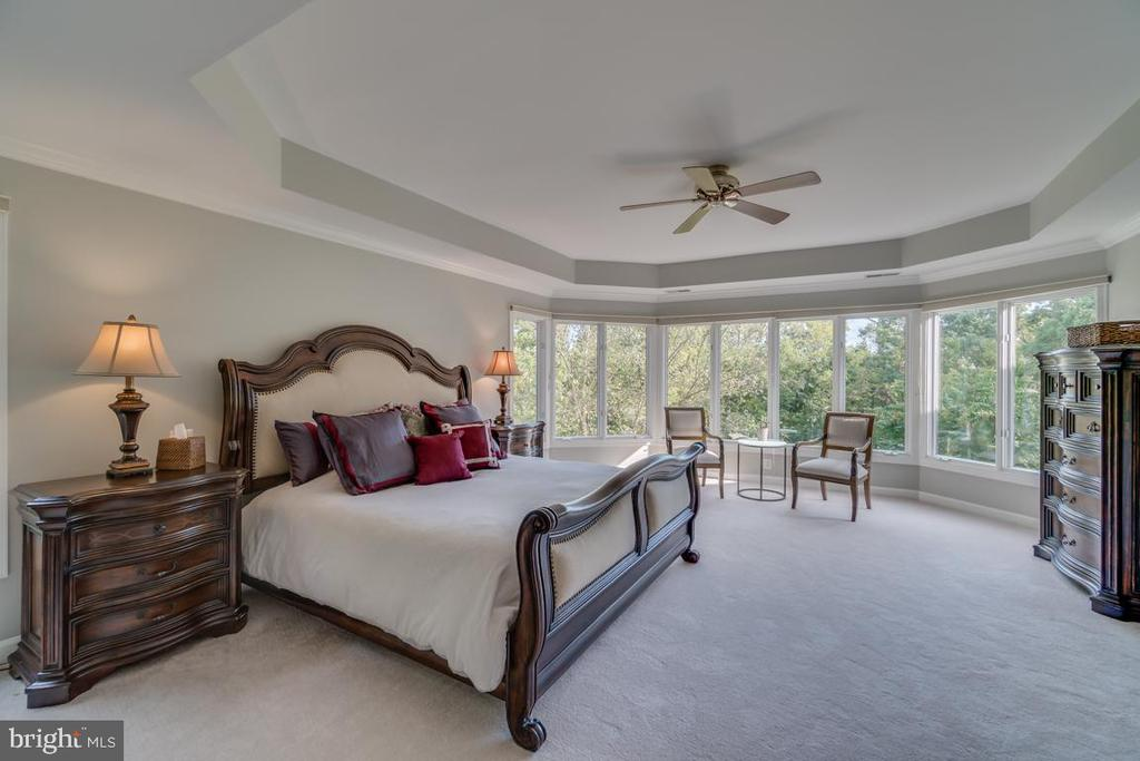 Master suite with gorgeous views - 43559 FIRESTONE PL, LEESBURG