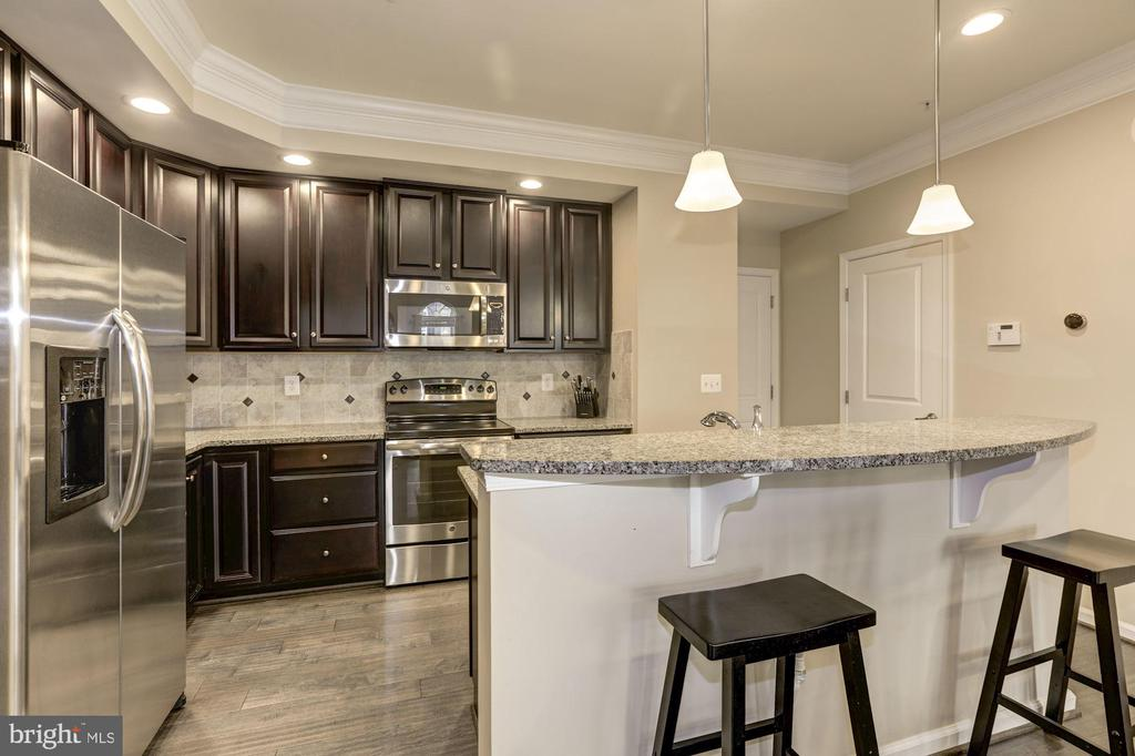Upgraded lighting and cabinetry - 14132 HARO TRL, GAINESVILLE