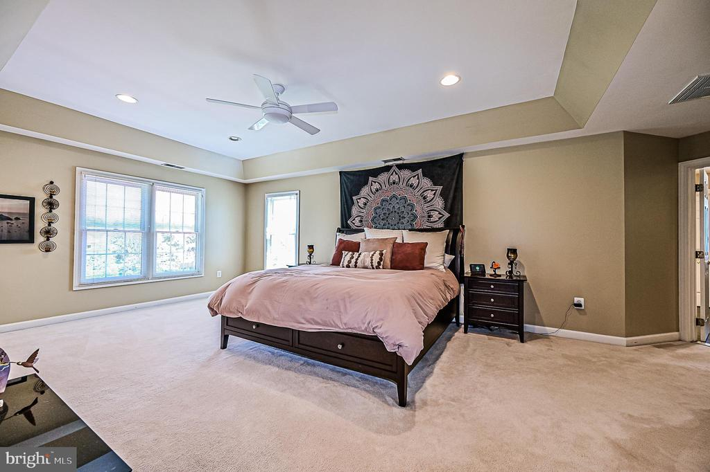 Owner's Bedroom w/ Tray Ceiling - 26124 TALAMORE DR, CHANTILLY