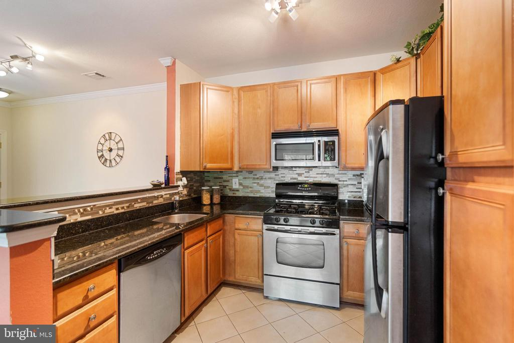 - 12034 CHASE CROSSING CIR #304, ROCKVILLE