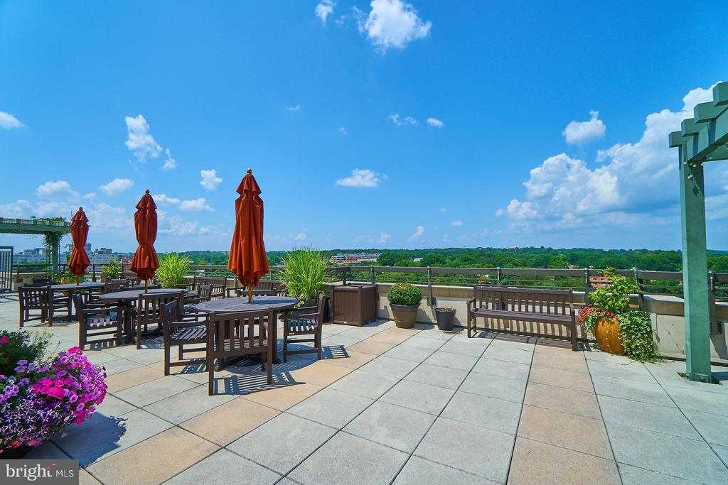 Expansive Roof Top Deck with Tables & Chairs - 3625 10TH ST N #205, ARLINGTON