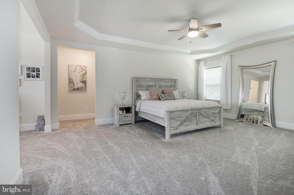 Spacious Master Bedroom - 1057 MARMION DR, HERNDON