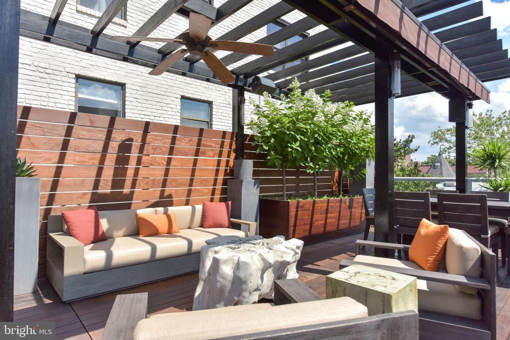 Pergola for added shade and privacy - 1744 WILLARD ST NW, WASHINGTON