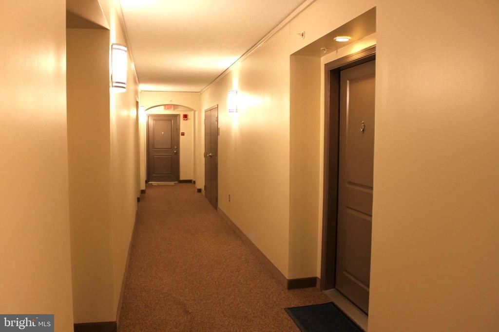 fifth floor hallway - 7915 EASTERN AVE #509, SILVER SPRING
