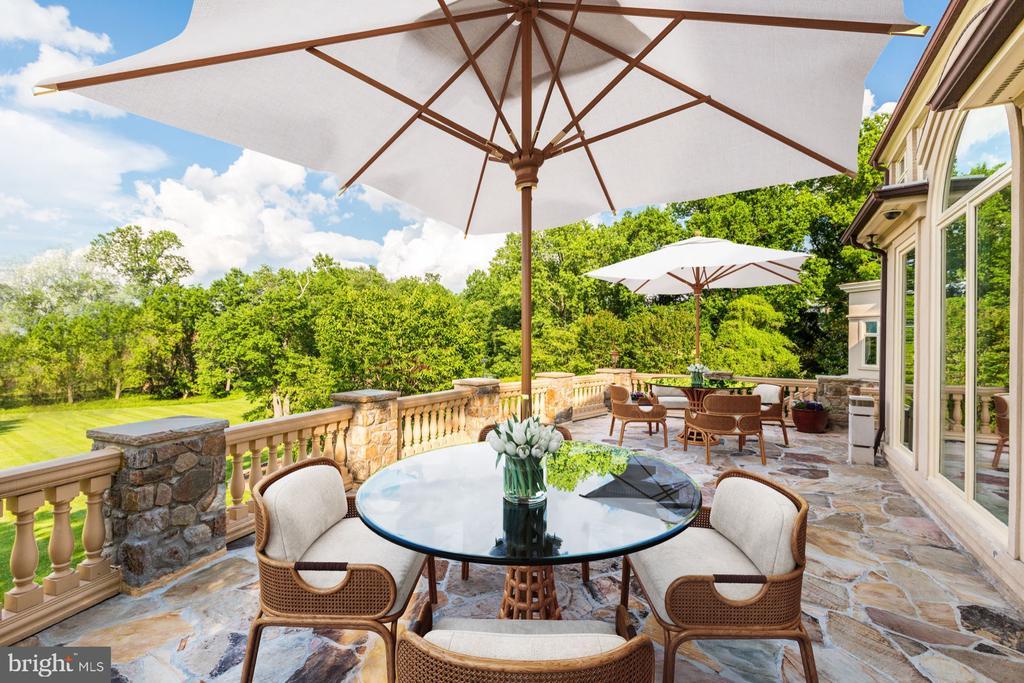 Spacious Terrace - 8313 PERSIMMON TREE RD, BETHESDA