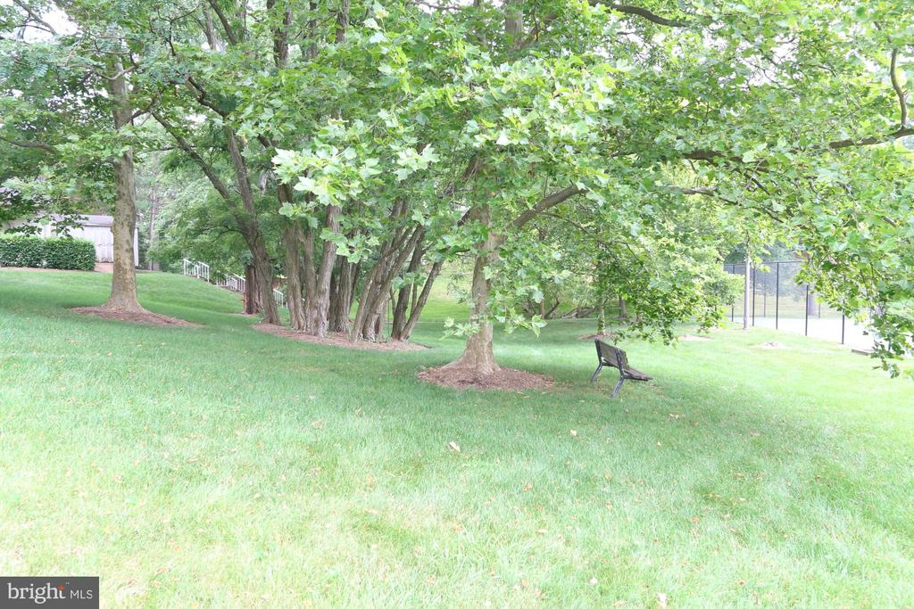 Nice Bench to catch your breath. - 13619 ORCHARD DR, CLIFTON