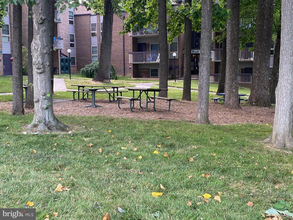 Property has Several Picnic areas - 2207 GREENERY LN #103-8, SILVER SPRING