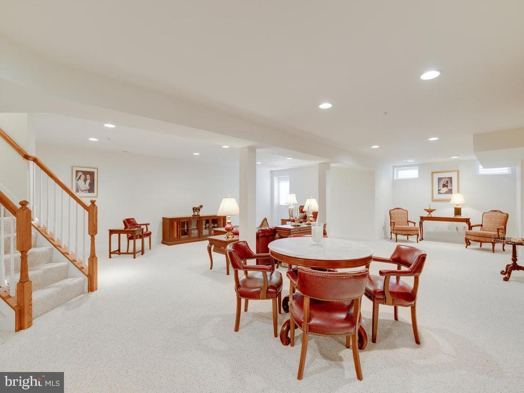 Lower Level-Family Room - 8853 WARM GRANITE DR #35, COLUMBIA