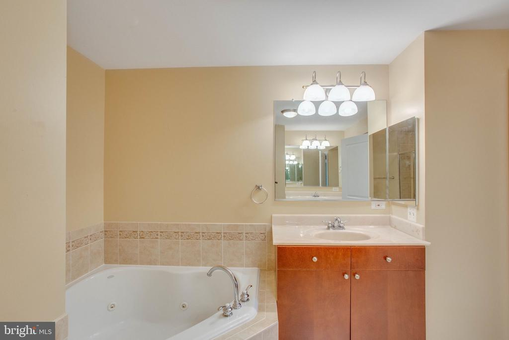 Owners Main Bath with Soaking Tub - 485 HARBOR SIDE ST #911, WOODBRIDGE