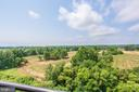 Expansive Green Space view - 485 HARBOR SIDE ST #911, WOODBRIDGE