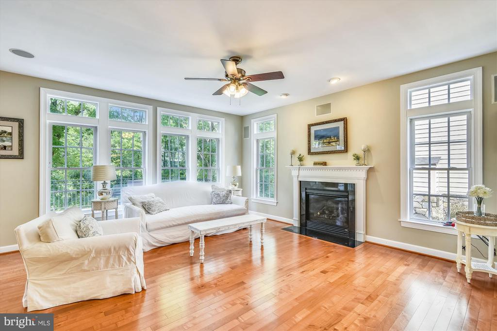 FAMILY ROOM WITH GAS FPL - 18313 BUCCANEER TER, LEESBURG
