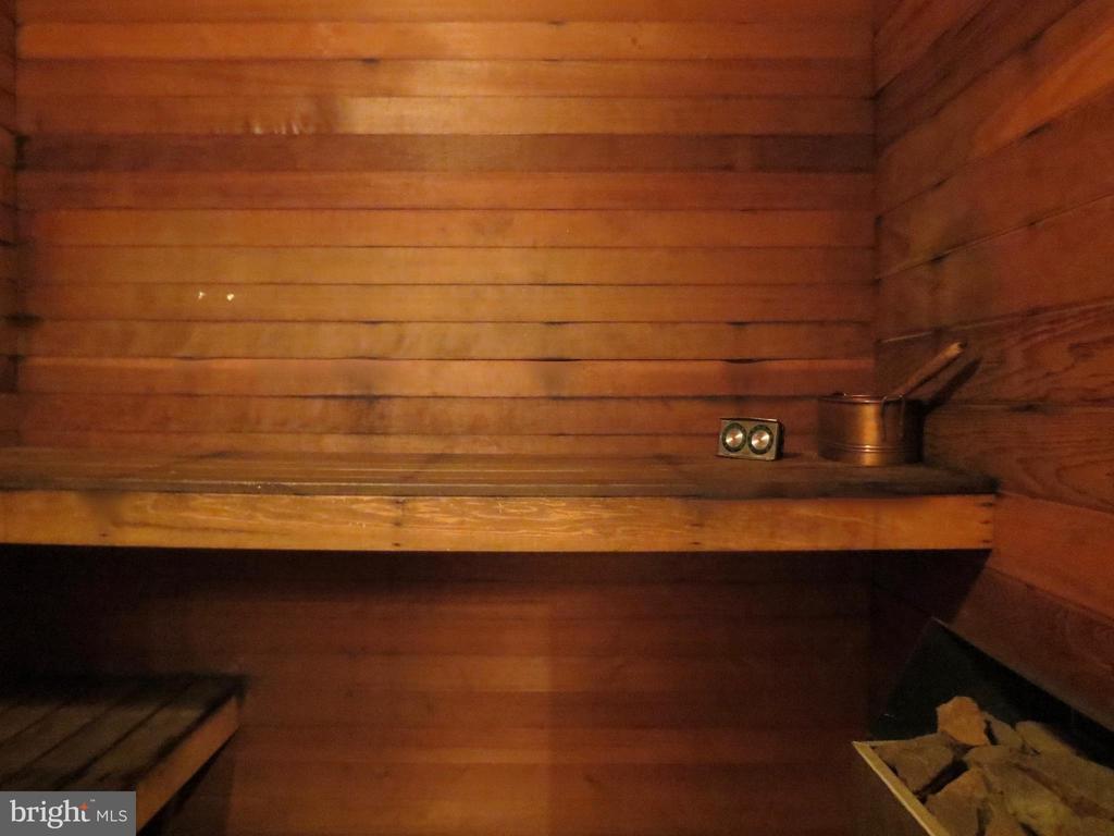 Sauna - 140 HORSESHOE HOLLOW LN, WASHINGTON