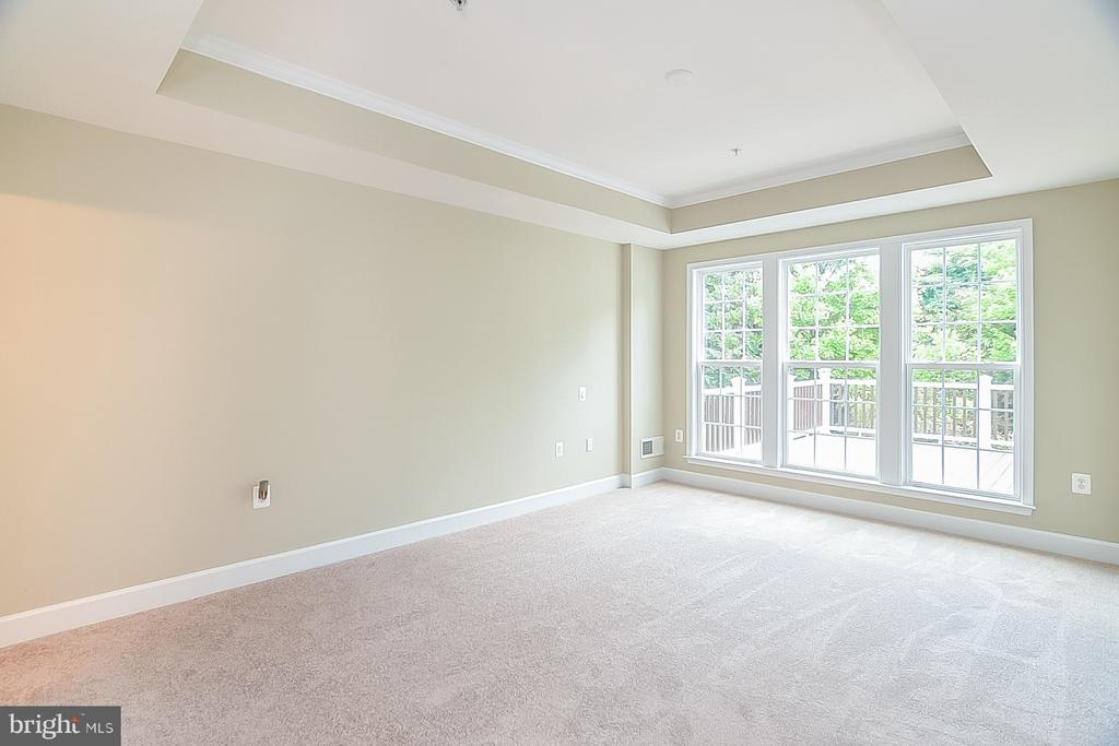 Master Bedroom with tray ceiling and large windows - 45 DENISON ST, FREDERICKSBURG
