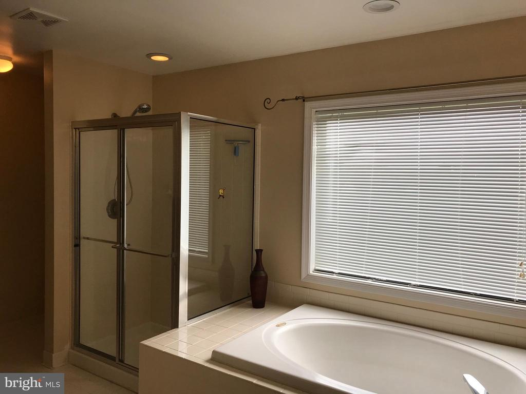 Master bath with sep. shower - 11079 SANANDREW DR, NEW MARKET
