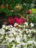 Sample of beautiful landscaping - 2500 CHILDS LN, ALEXANDRIA