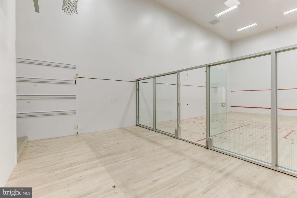 Racquetball Court - 11140 HOMEWOOD RD, ELLICOTT CITY