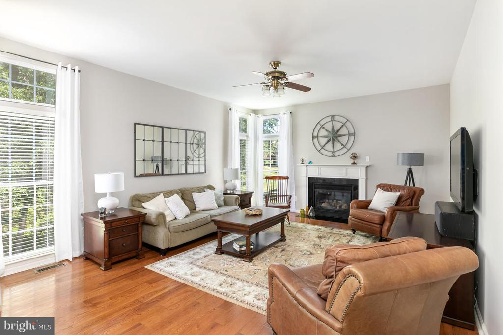 Family Room - 43378 COTON COMMONS DR, LEESBURG