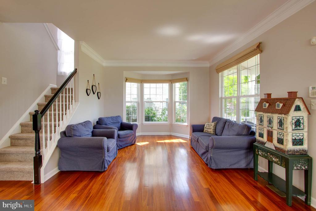 Living Room - 42612 ANABELL LN, CHANTILLY