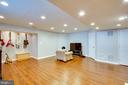 Rec Room Lower Level - 42612 ANABELL LN, CHANTILLY
