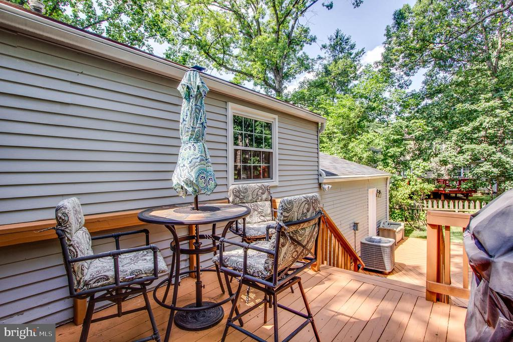 Deck off the Three season room. - 103 APPLEGATE DR, STERLING