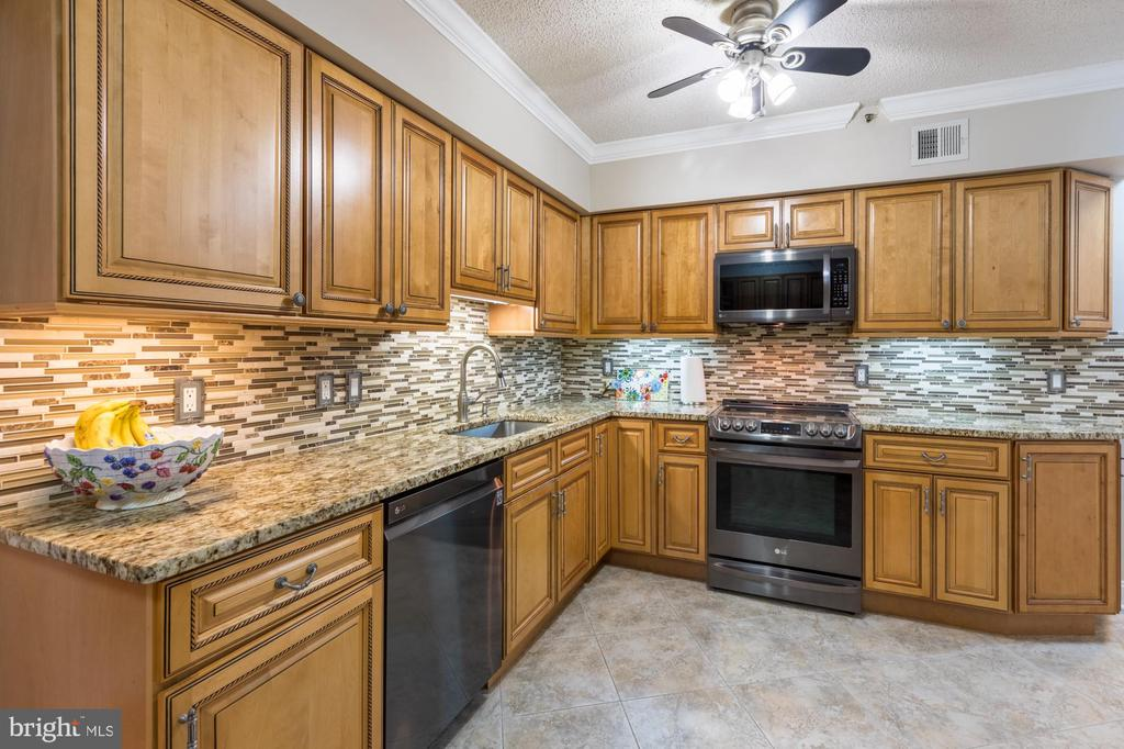 Remodeled Kitchen, LG appliances - 1300 CRYSTAL DR #306S, ARLINGTON