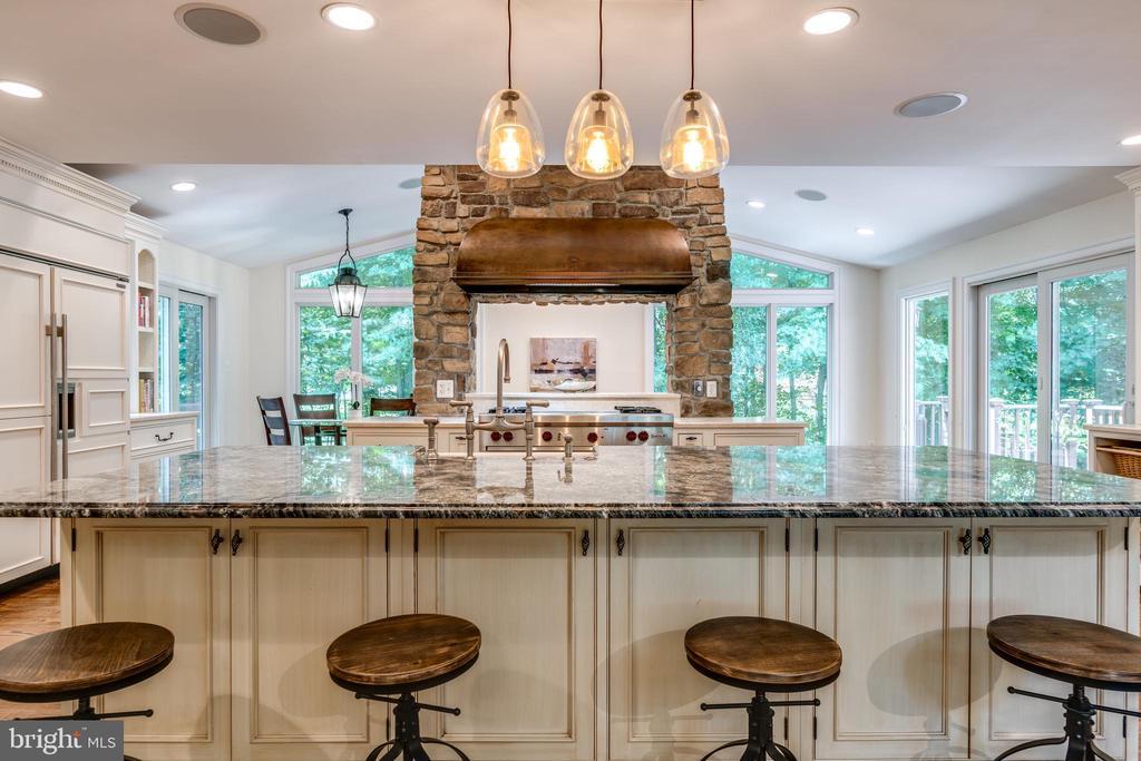 Light-filled Open Concept Kitchen Living - 1224 BISHOPSGATE WAY, RESTON