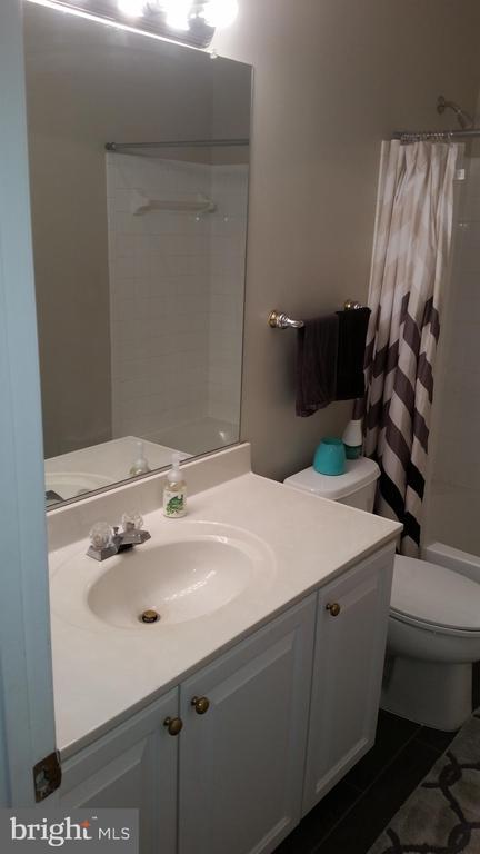 Full Bathroom # 2 - 20363 FALLSWAY TER, STERLING