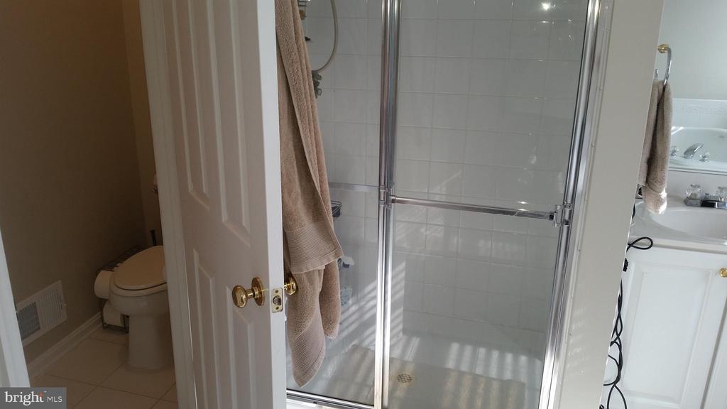 Master Bathroom - 20363 FALLSWAY TER, STERLING