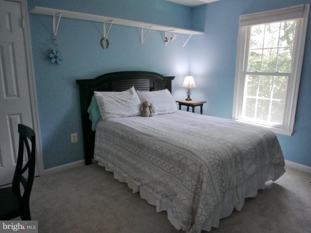 Additional Bedroom #1 - 12003 MEADOWVILLE CT, HERNDON