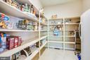 Large walk-in pantry - 9 GALLERY RD, STAFFORD
