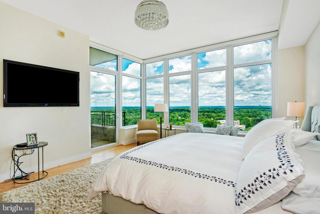 Master Bedroom - 8220 CRESTWOOD HEIGHTS DR #1814, MCLEAN