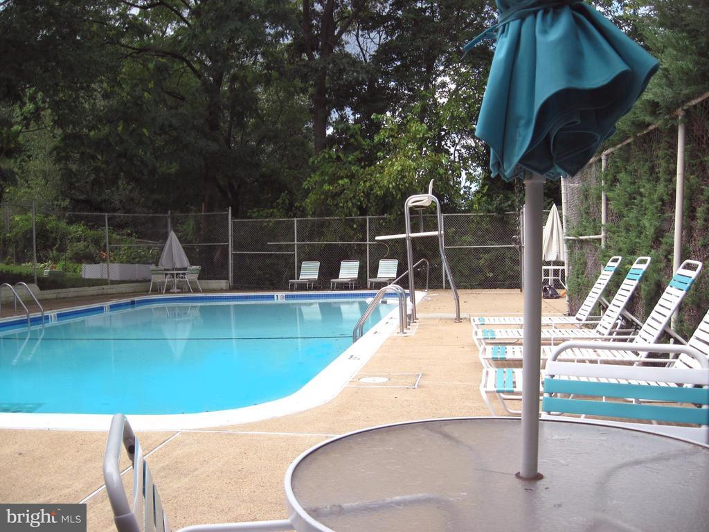 Community pool - 3701 5TH ST S #401, ARLINGTON