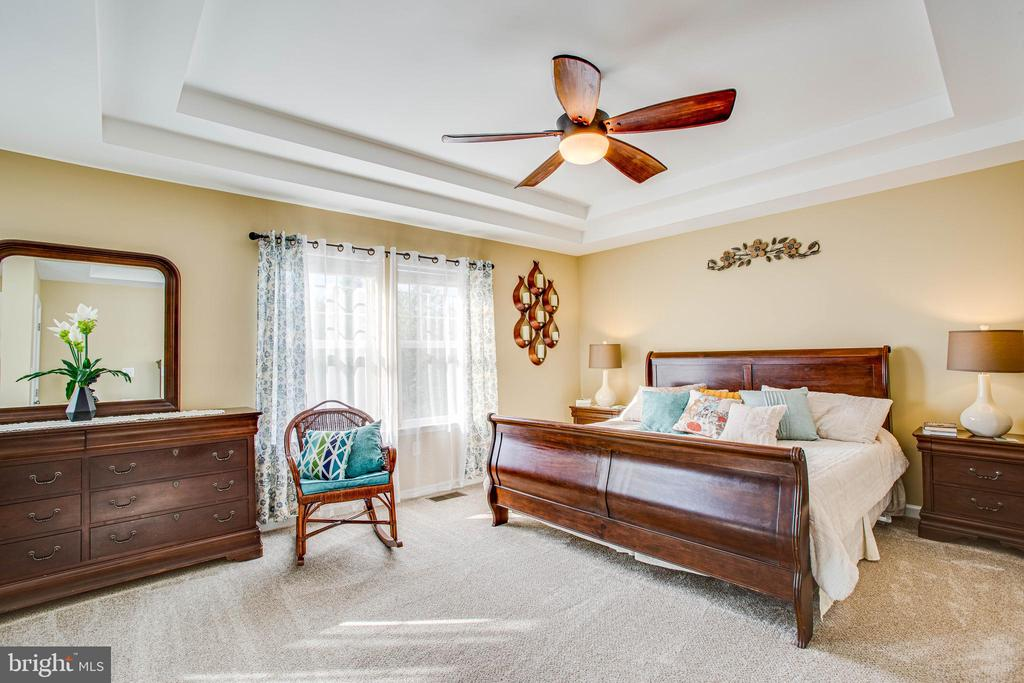 Master bedroom with high tray ceilings - 52 WAGONEERS LN, STAFFORD