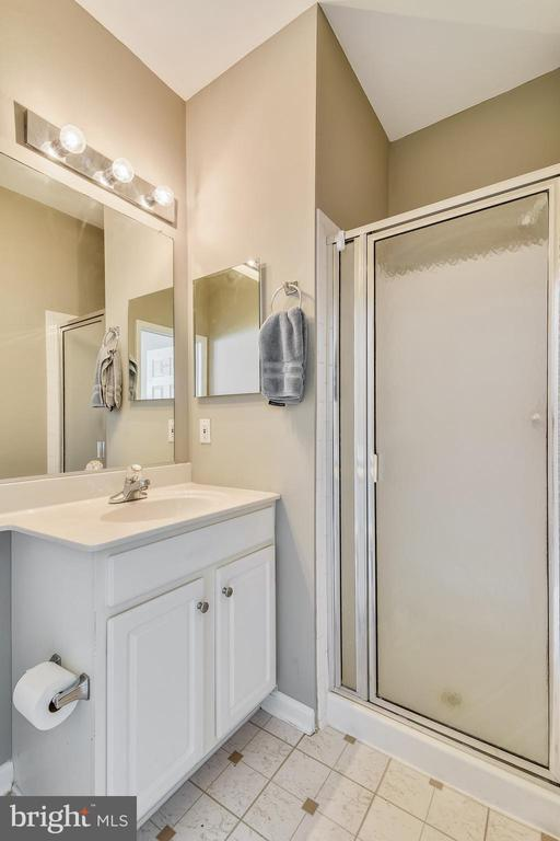 Master Bath w/ Shower - 21816 PETWORTH CT, ASHBURN