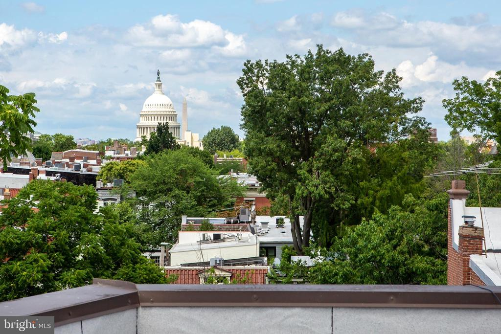 Roof Deck Capitol Dome View - 18 9TH ST NE #204, WASHINGTON