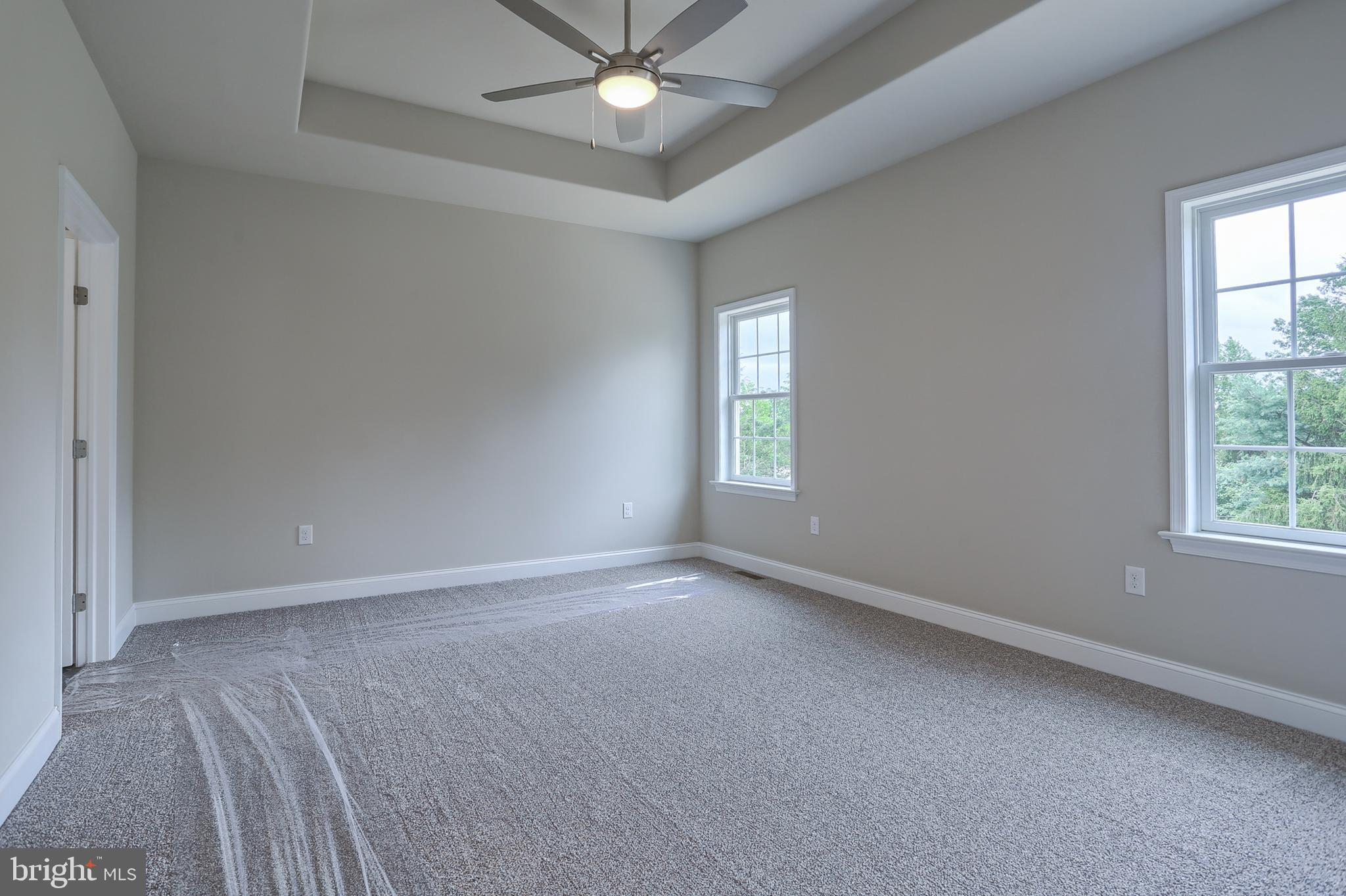 Master BR with tray ceiling