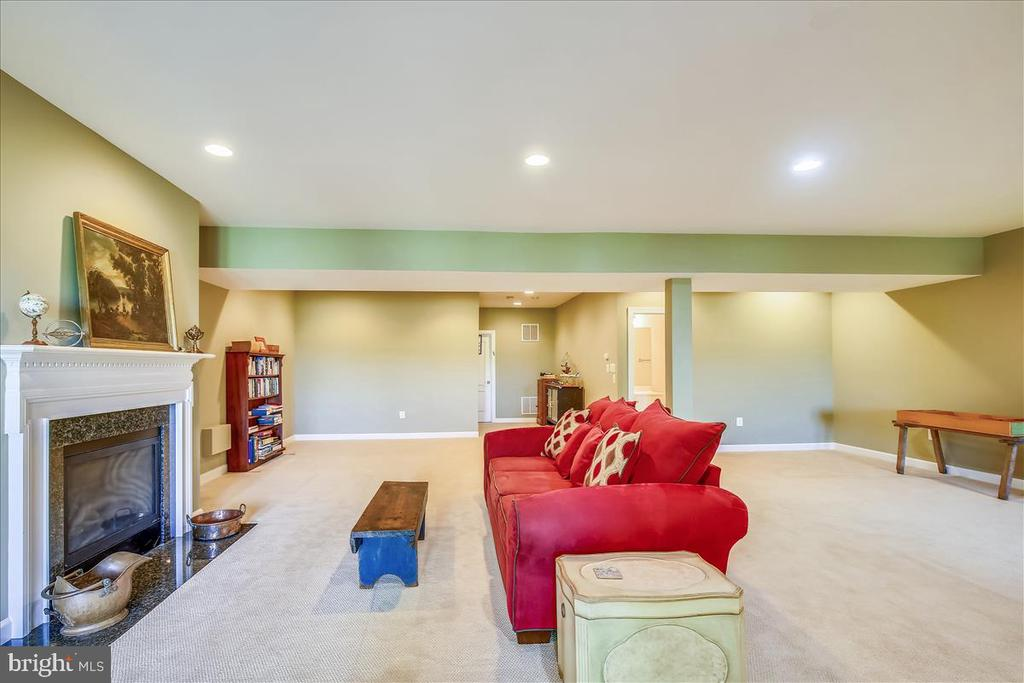 Another view of spacious lower level - 18356 FAIRWAY OAKS SQ, LEESBURG