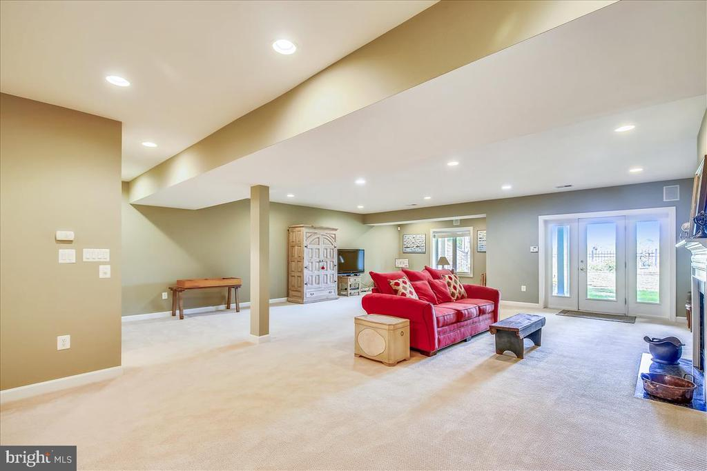 Tons of room to entertain, exercise, watch movies - 18356 FAIRWAY OAKS SQ, LEESBURG