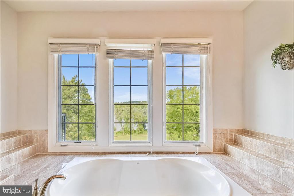 More awesome views relaxing in your soaking tub - 18356 FAIRWAY OAKS SQ, LEESBURG