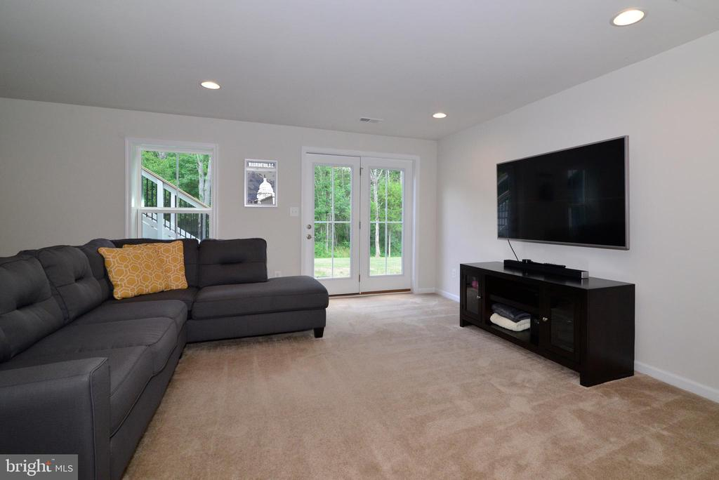 Lower walk out level - 24890 DAHLIA MANOR PL, ALDIE