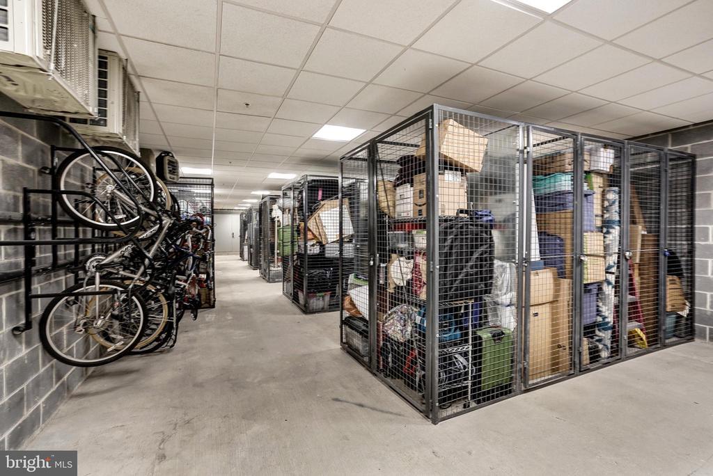 Huge storage unit conveys with  condo. - 460 NEW YORK AVE NW #801, WASHINGTON