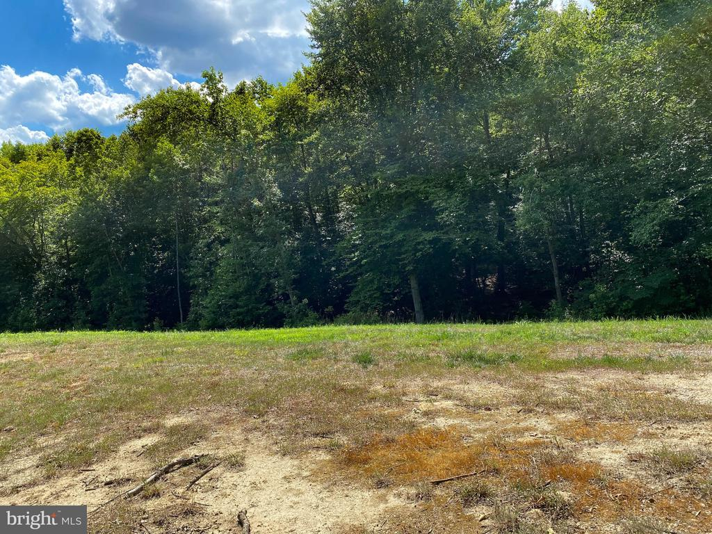 Wooded Lot! Private! - 45 NEWTON RD, FREDERICKSBURG