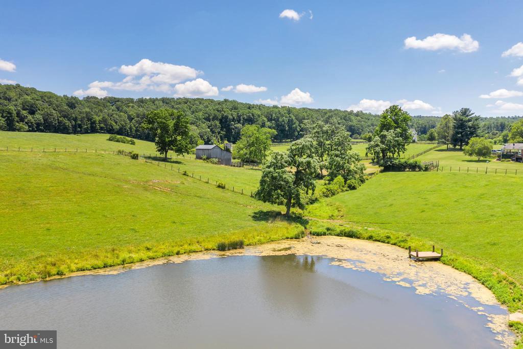 Stocked Pond on 55 Acres (23880 Aldie Dam) - 23880 ALDIE DAM RD, ALDIE