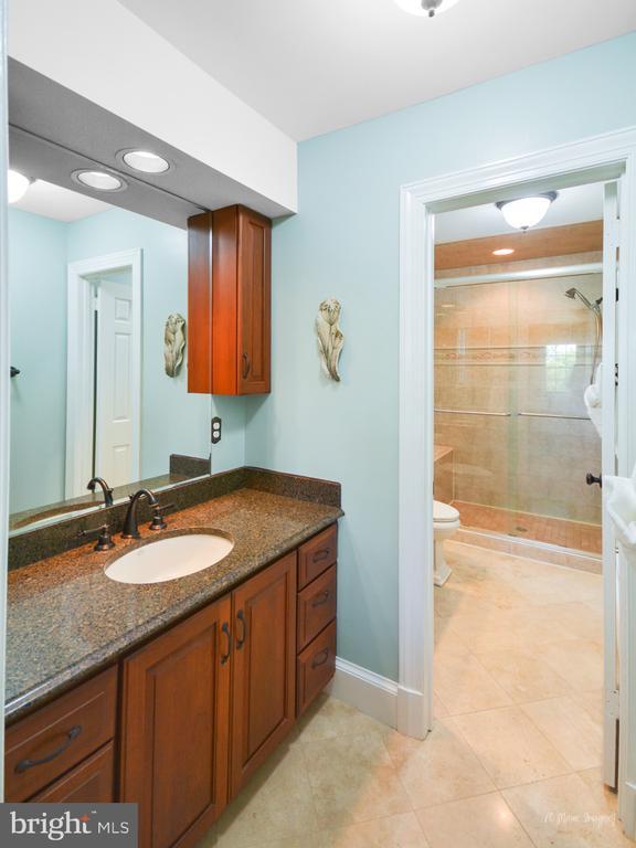 Updated Master bath with double vanities & shower - 10095 DUDLEY DR, IJAMSVILLE