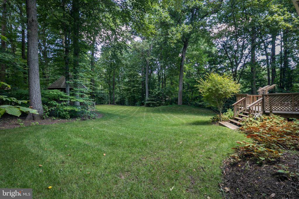 Spacious and Open Backyard - 10616 CANTERBERRY RD, FAIRFAX STATION
