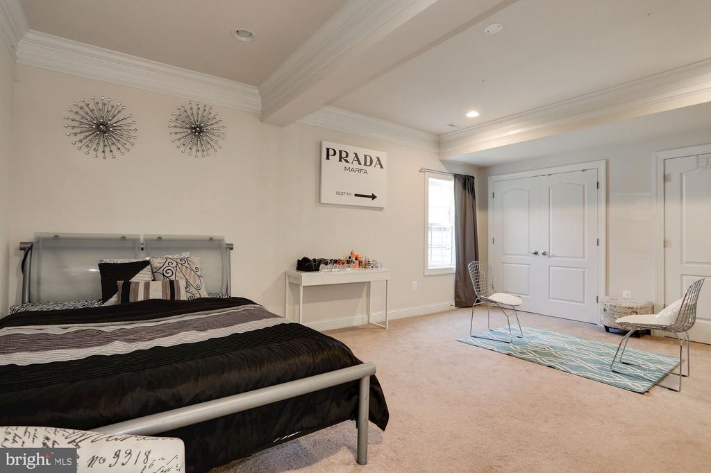 Lower Level Bedroom/Theater Room - 7717 MAGARITY RD, FALLS CHURCH