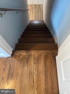 Basement Stairs - 837 OGLETHORPE ST NE, WASHINGTON