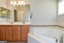 Primary Luxury Bath - 11872 BENTON LAKE RD, BRISTOW