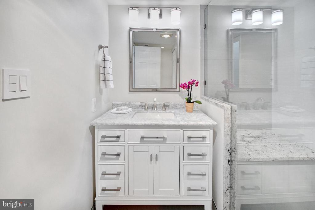 Master en-suite bath - 2100 LEE HWY #241, ARLINGTON